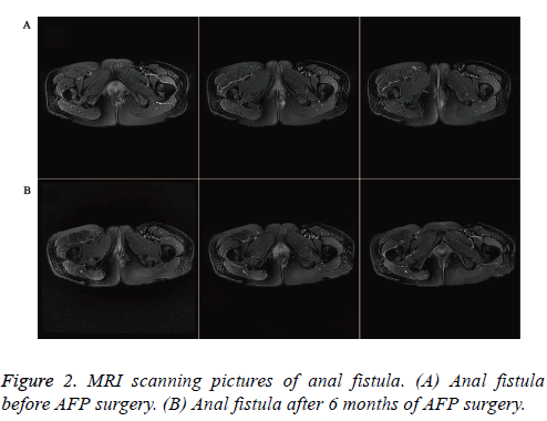 biomedres-scanning-pictures