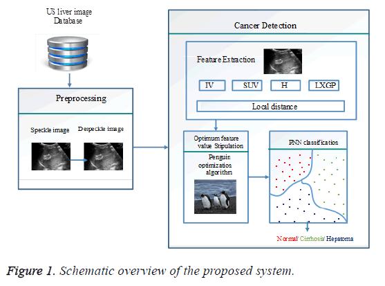 biomedres-schematic-overview