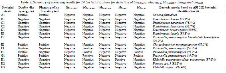 biomedres-screening-results-bacterial-isolates