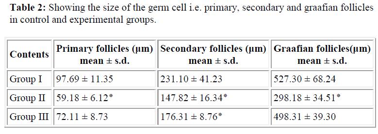 biomedres-secondary-graafian-follicles-experimental-groups