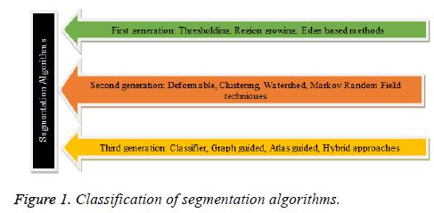 A voyage on medical image segmentation algorithms