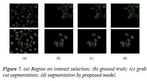 biomedres-segmentation-proposed