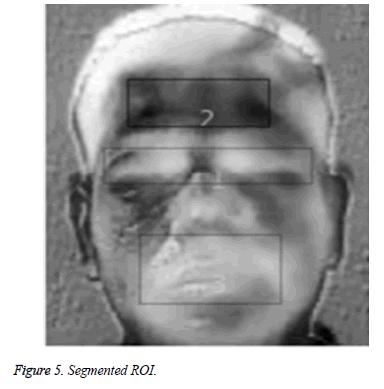 biomedres-segmented