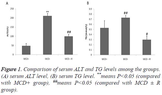 biomedres-serum-ALT-TG-levels