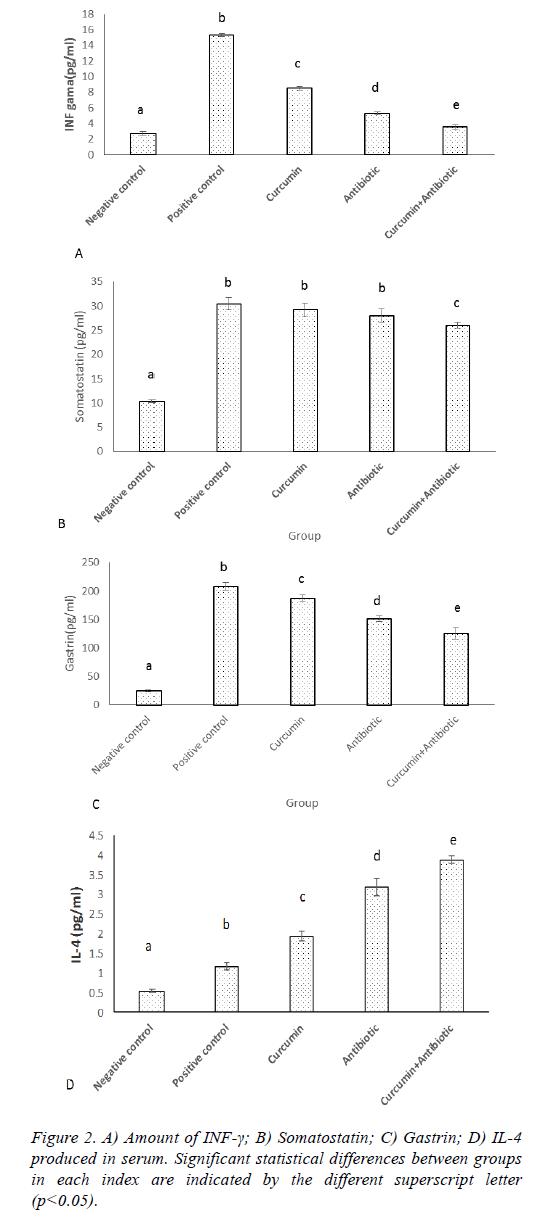 biomedres-serum-antibody