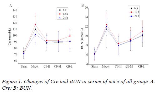biomedres-serum-mice
