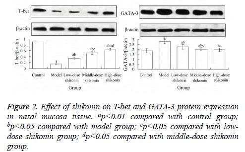 biomedres-shikonin-group