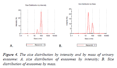 biomedres-size-distribution