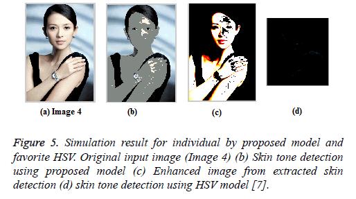 biomedres-skin-HSV-model