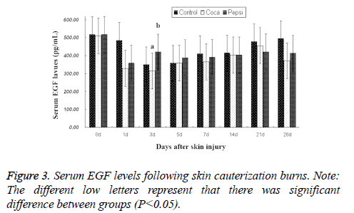 biomedres-skin-cauterization