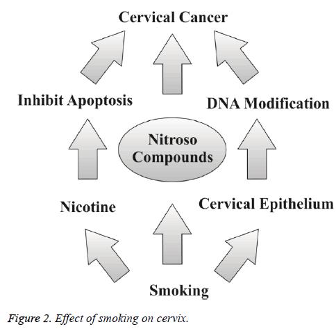 biomedres-smoking-cervix