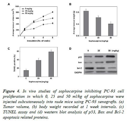 biomedres-sophocarpine-inhibiting