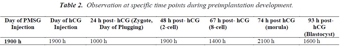 biomedres-specific-time-points-during-preimplantation