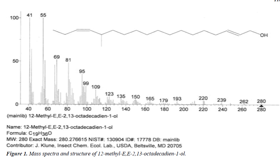 biomedres-spectra-structure