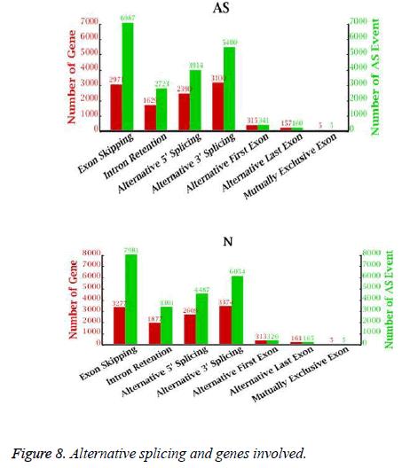 biomedres-splicing-genes
