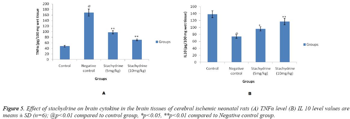 biomedres-stachydrine-brain-cytokine
