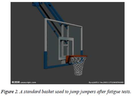 biomedres-standard-basket