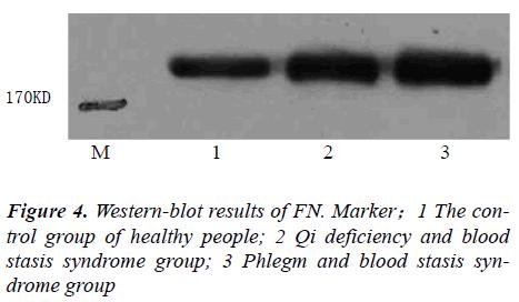 biomedres-stasis-syndrome-group