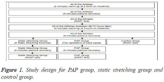 biomedres-static-stretching-group