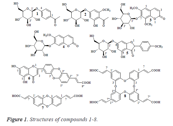 biomedres-structures-compounds