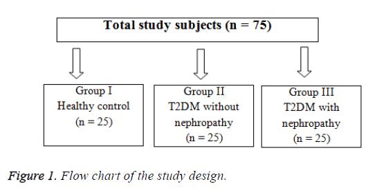 biomedres-study-design