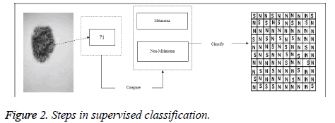biomedres-supervised-classification