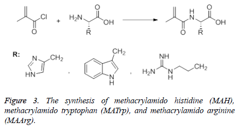 synthesis-methacrylamido-methacrylamido