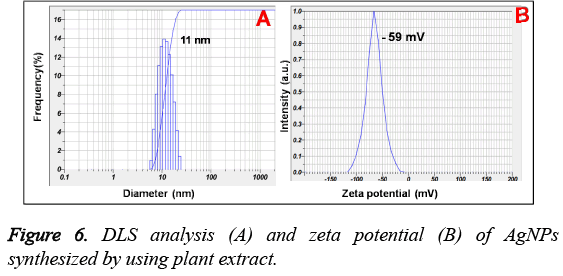 biomedres-synthesized-plant-extract