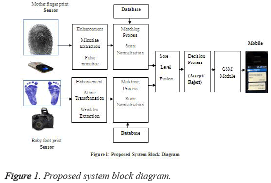 biomedres-system-block-diagram