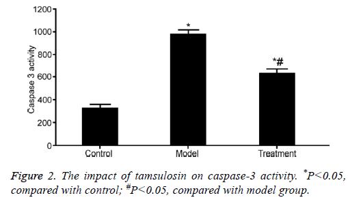biomedres-tamsulosin-caspase-3-model