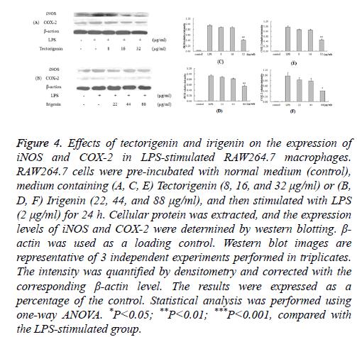 biomedres-tectorigenin-irigenin