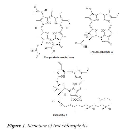 biomedres-test-chlorophylls
