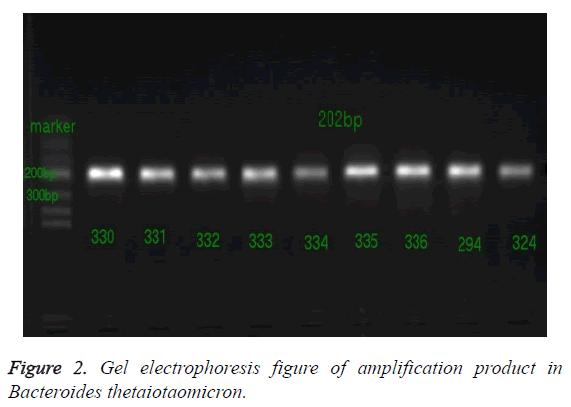 biomedres-thetaiotaomicron