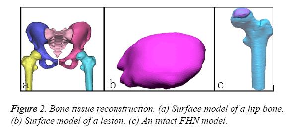 biomedres-tissue-reconstruction