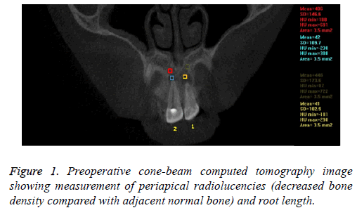 biomedres-tomography-image