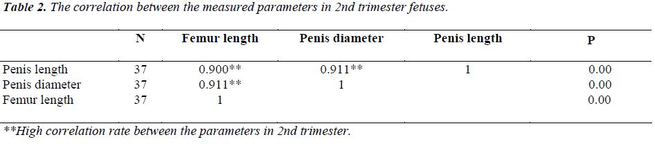 fetal femur length