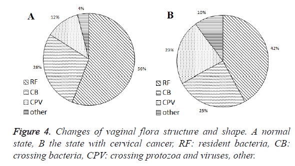 biomedres-vaginal-flora