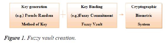 biomedres-vault-creation
