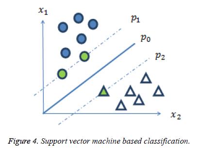 biomedres-vector-machine