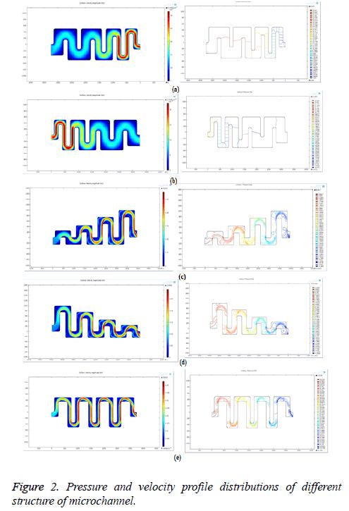 biomedres-velocity-profile