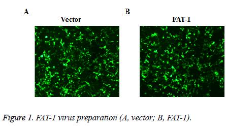 biomedres-virus-preparation