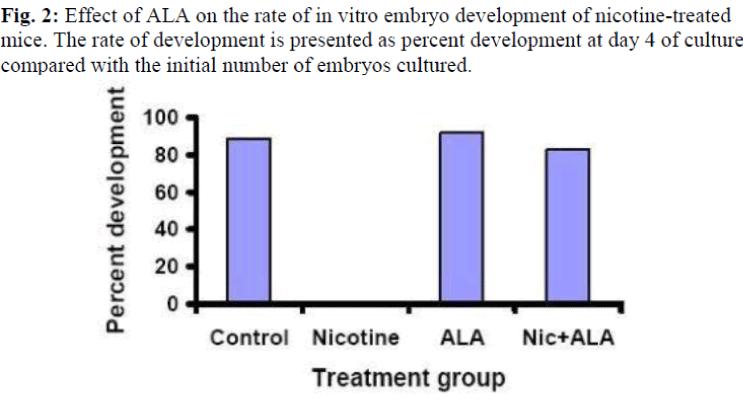 biomedres-vitro-embryo