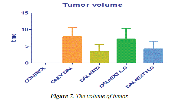 biomedres-volume-tumor