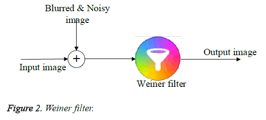 biomedres-weiner-filter