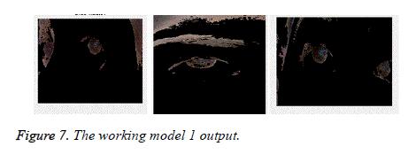 biomedres-working-model