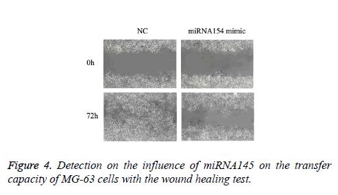 biomedres-wound-healing