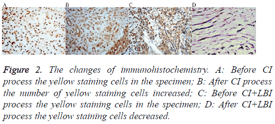 biomedres-yellow-staining-cells
